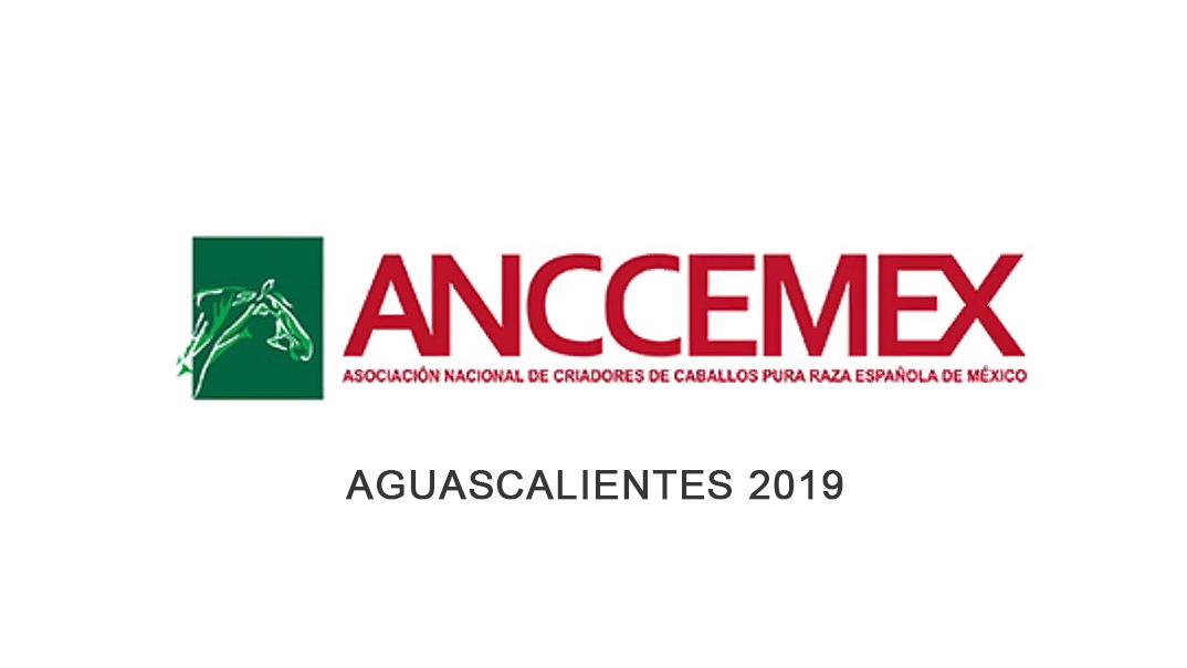 AGUASCALIENTES 2019