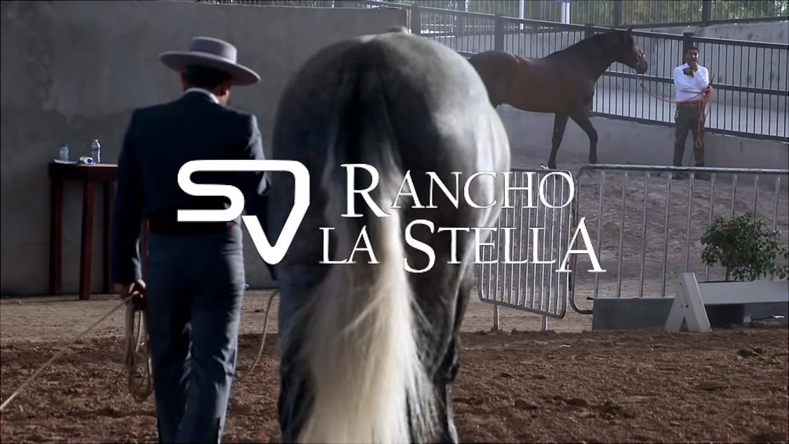 RANCHO LA STELA ARRASAN EN MOVIMIENTOS EN AGUASCALIENTES 2019