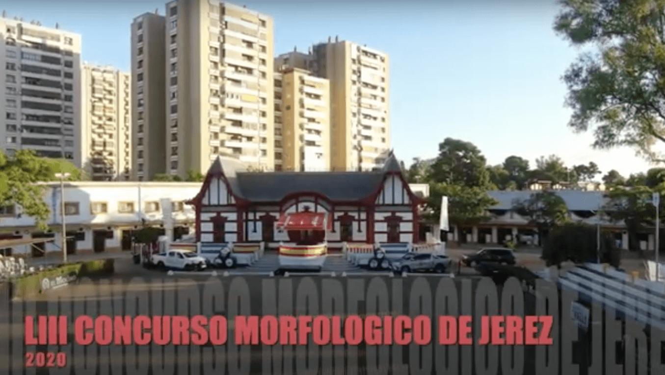 Reportaje del LIII Concurso Morfológico Ciudad de Jerez 2020