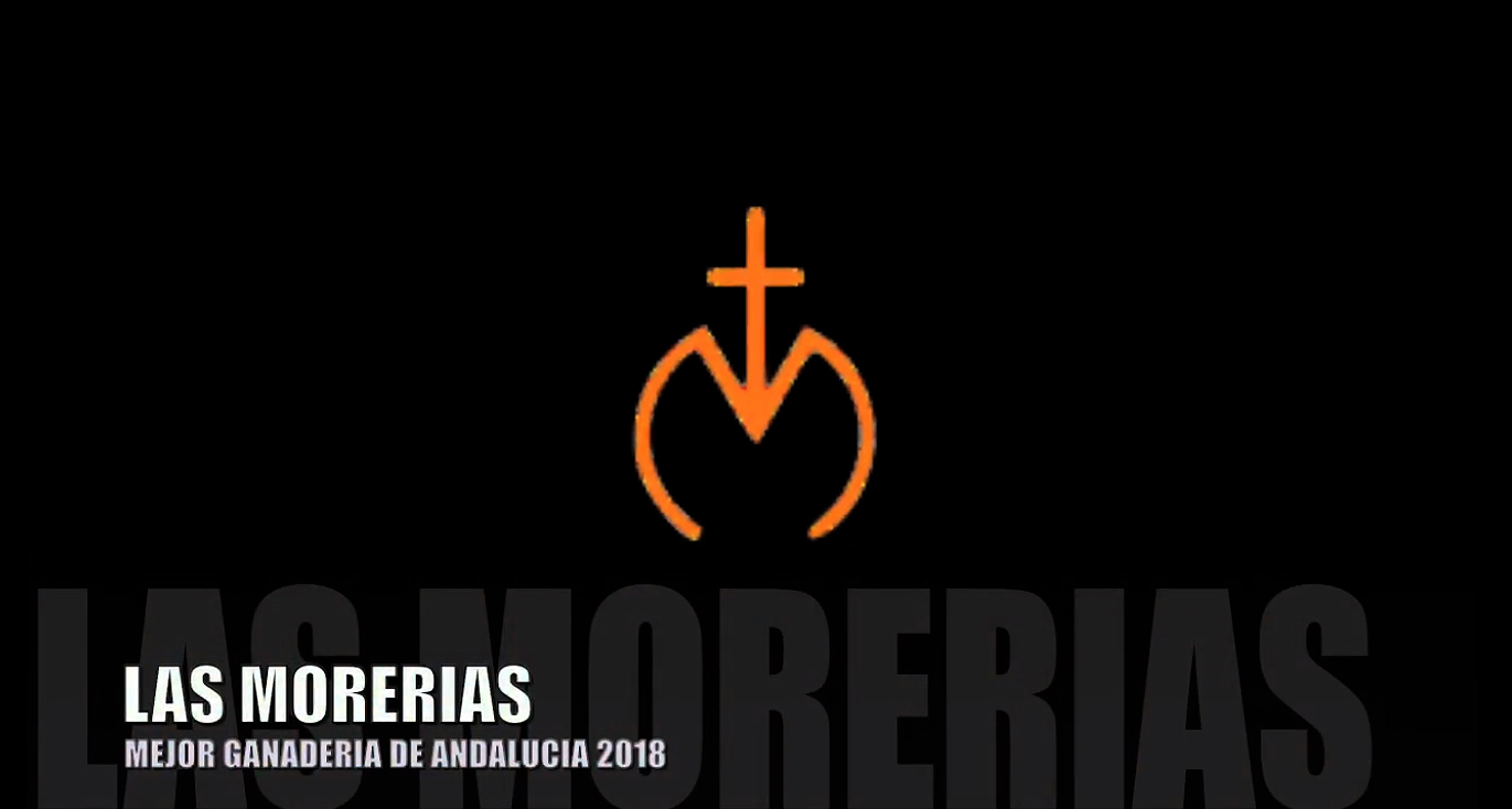 LAS MORERIAS, MEJOR GANADERIA DE ANDALUCIA 2018