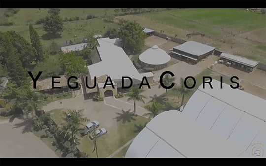 Yeguada Coris